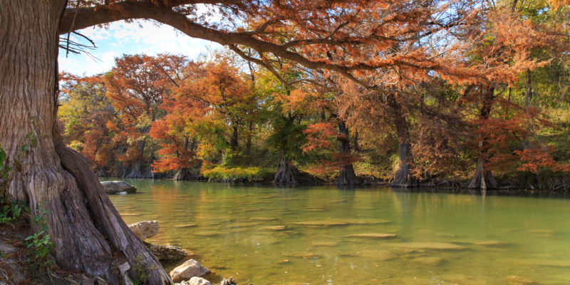 Explore New Braunfels Beautiful Hill Country Rivers