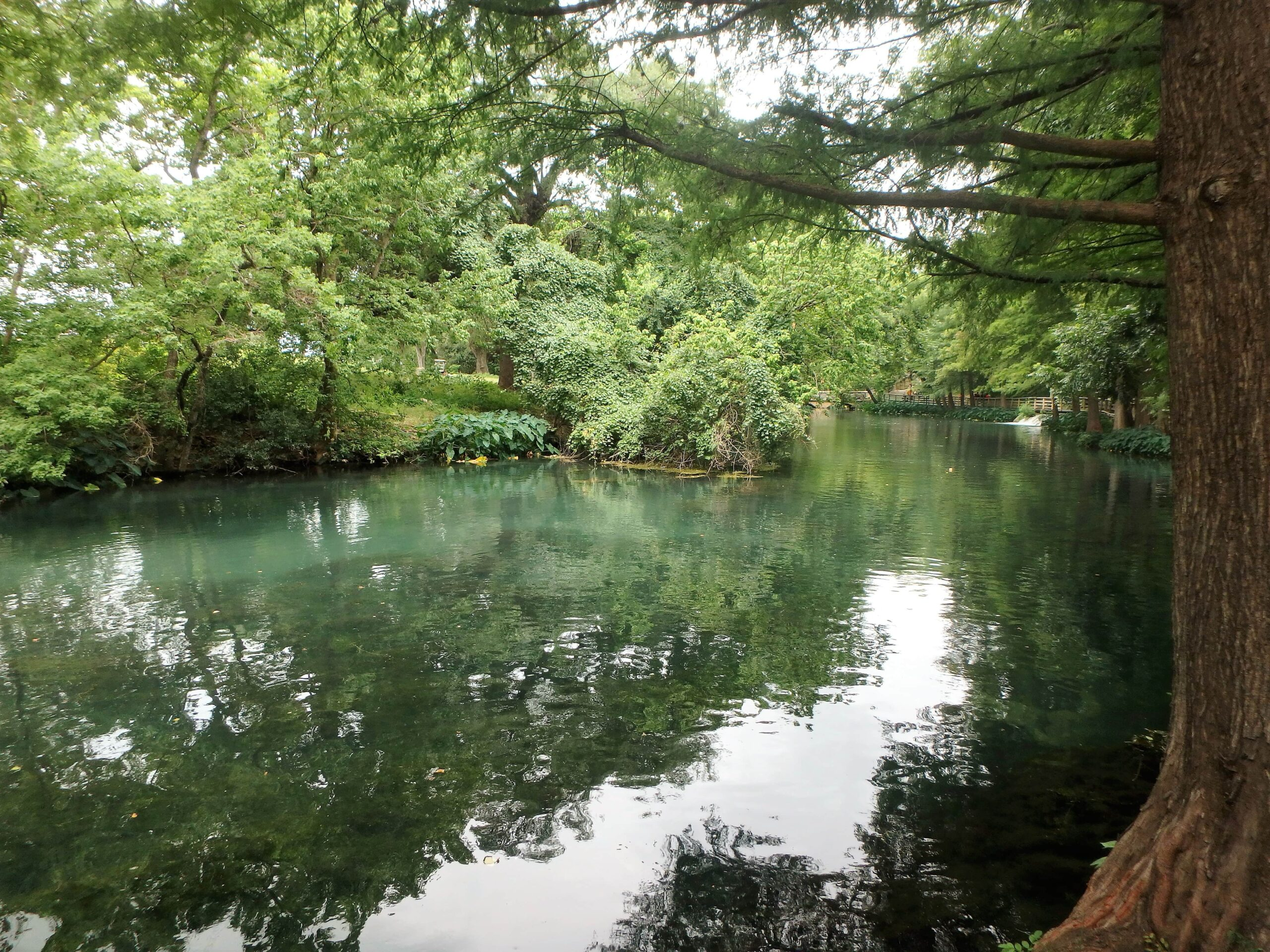 Best places to live in New Braunfels